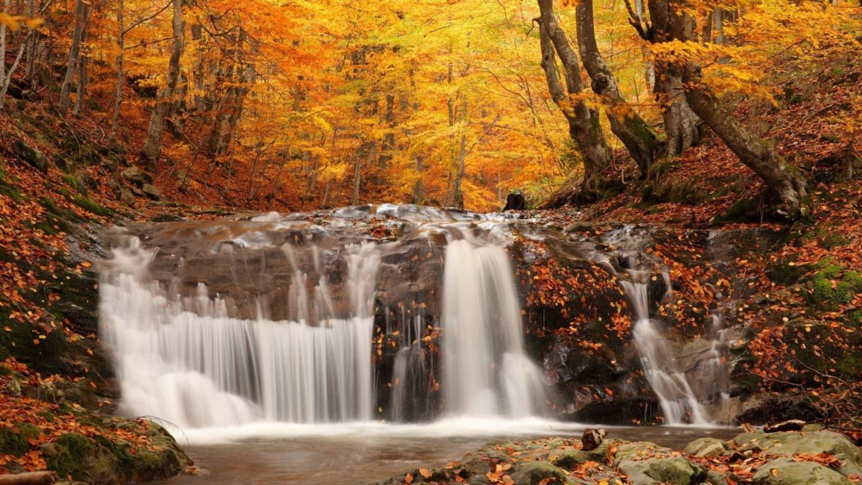 landscapes nature waterfall rivers trees forest autumn fall seasons leaves colors wallpaper