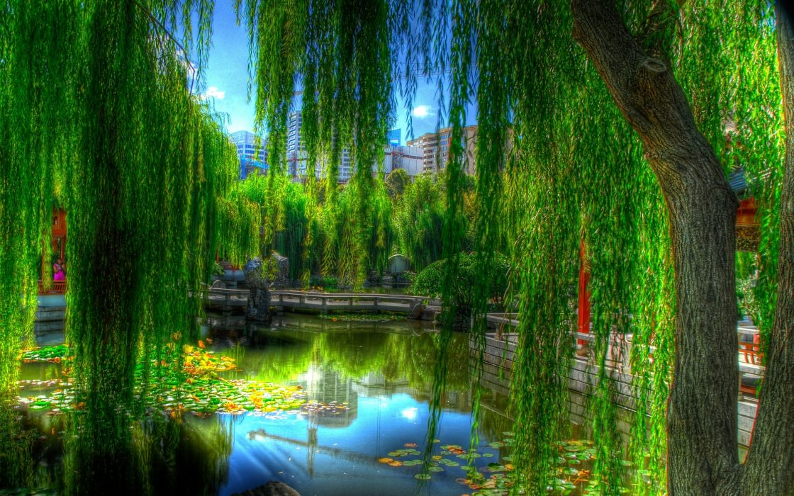 landscapes nature lakes asian oriental reflection trees green colors garden artistic wallpaper