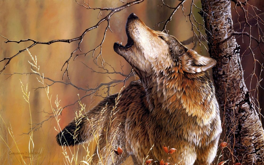 animals wolves wolf artistic paintings howl nature trees forests wallpaper