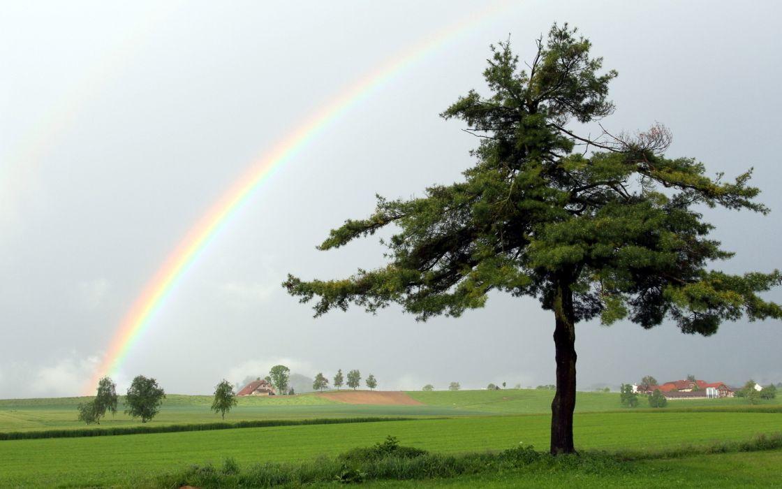landscapes nature rainbow fields trees green grass clouds storm rain wallpaper