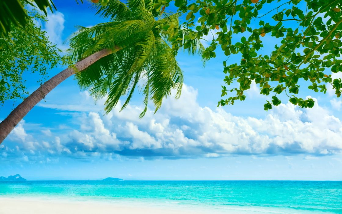 seascapes ocean sea tropical beaches skies clouds trees water wallpaper