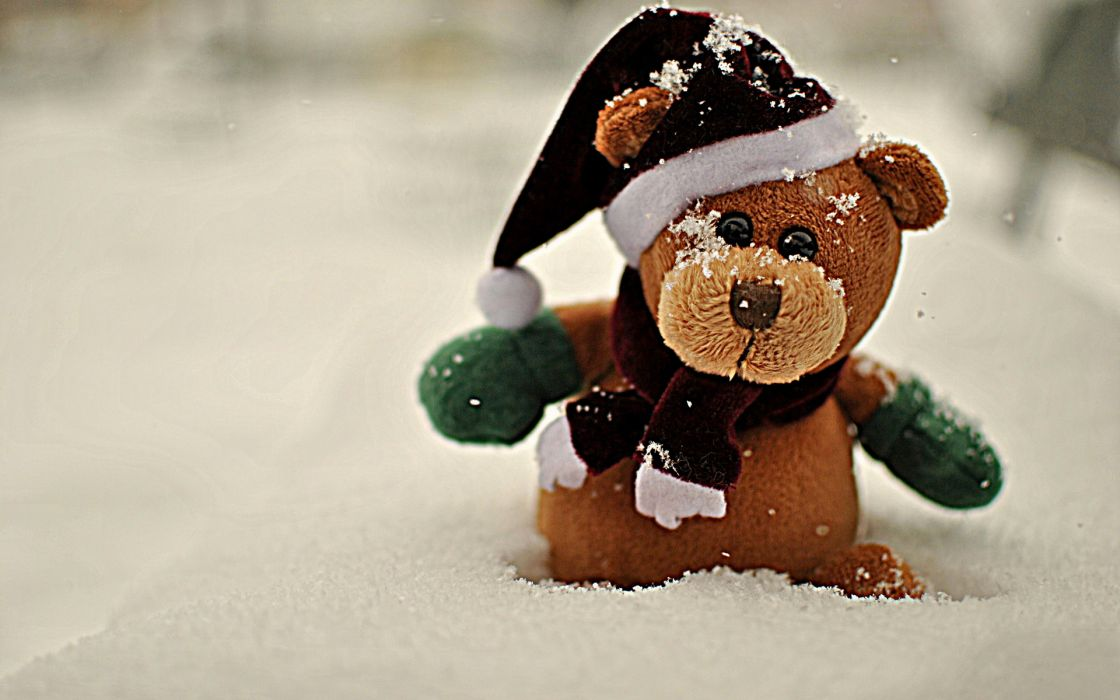 bear animals teddy teddy-bear bokeh winter snow seasonal wallpaper