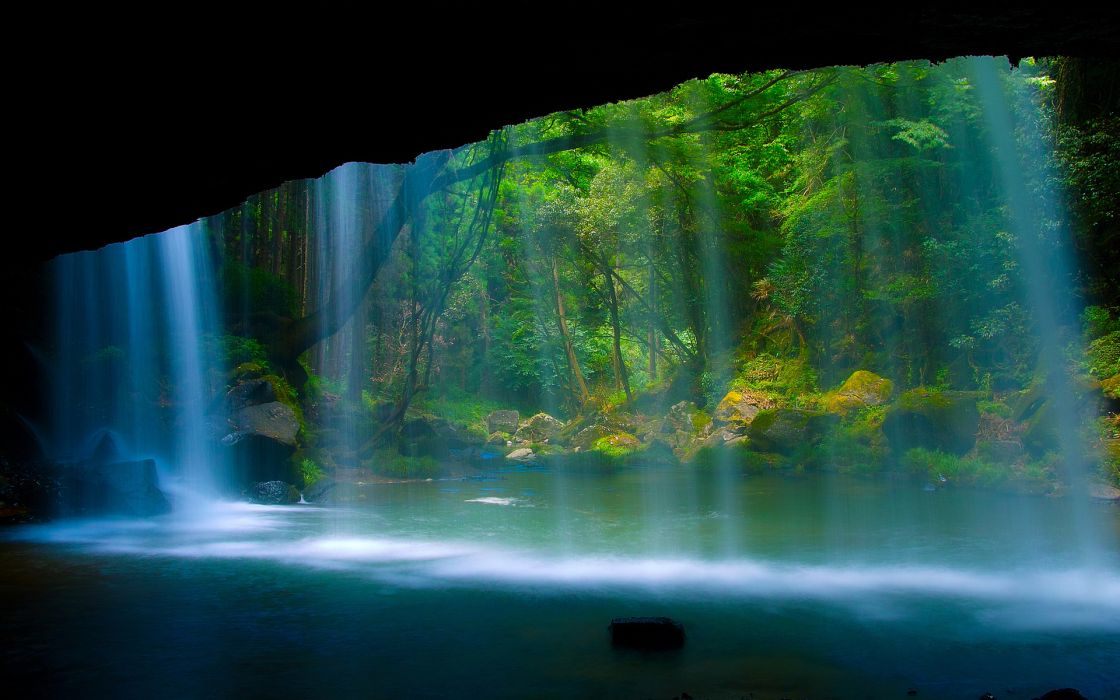 trees forest waterfalls water pool rivers wallpaper