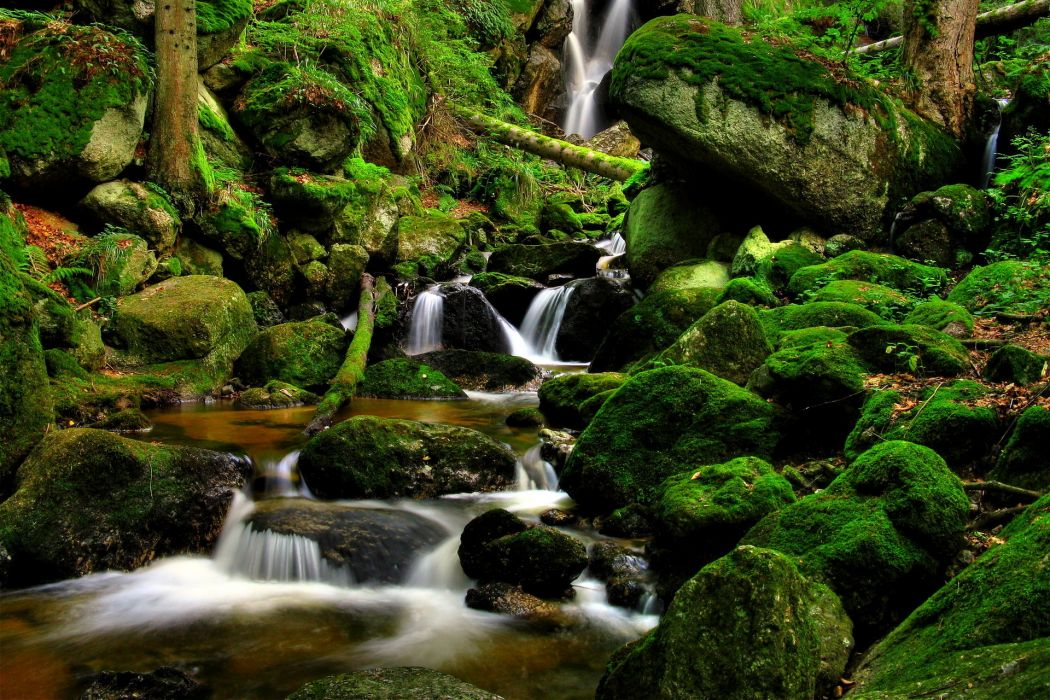nature landscapes waterfalls trees forest moss rocks stream rivers green wallpaper