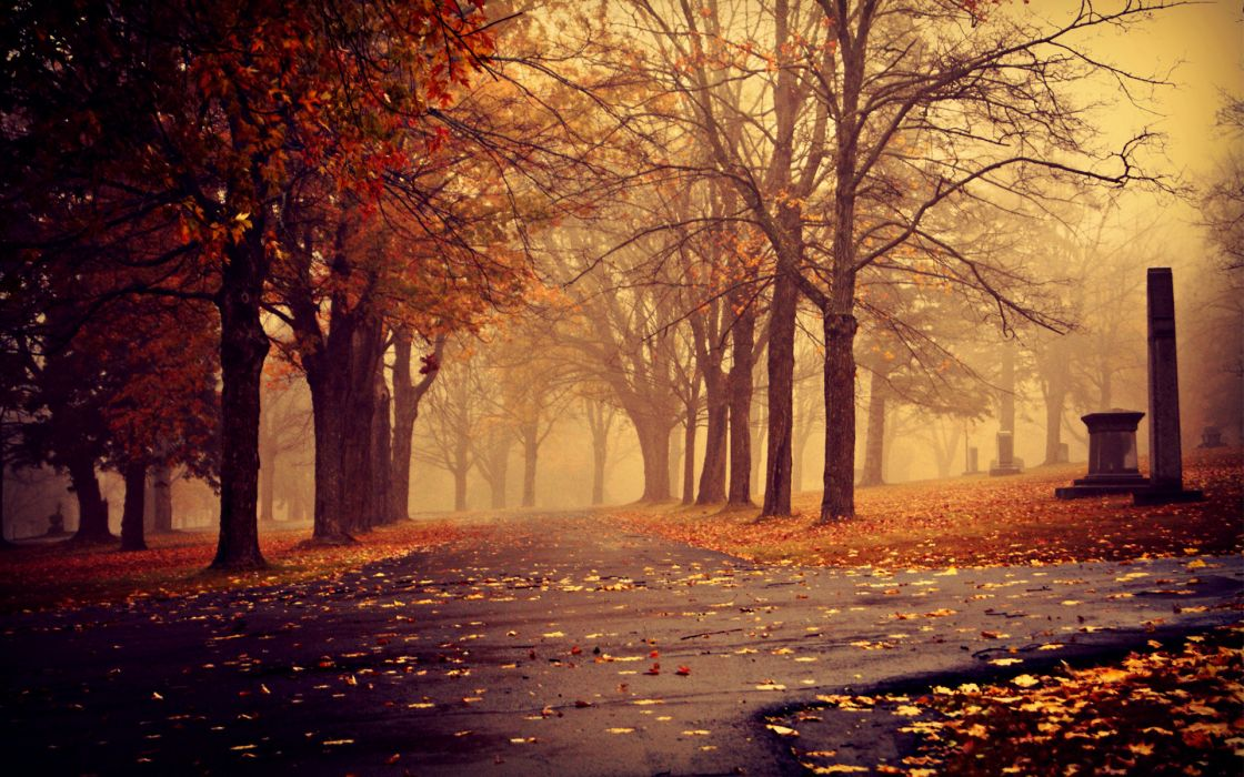 sidewalk path pathway park landscapes nature trees autumn fall seasons leaves fog mist haze wallpaper