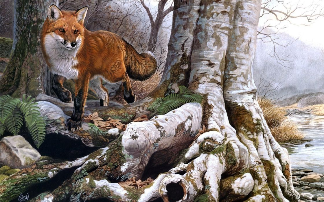 animals fox foxes nature landscapes trees forests rivers paintings artistic art wallpaper
