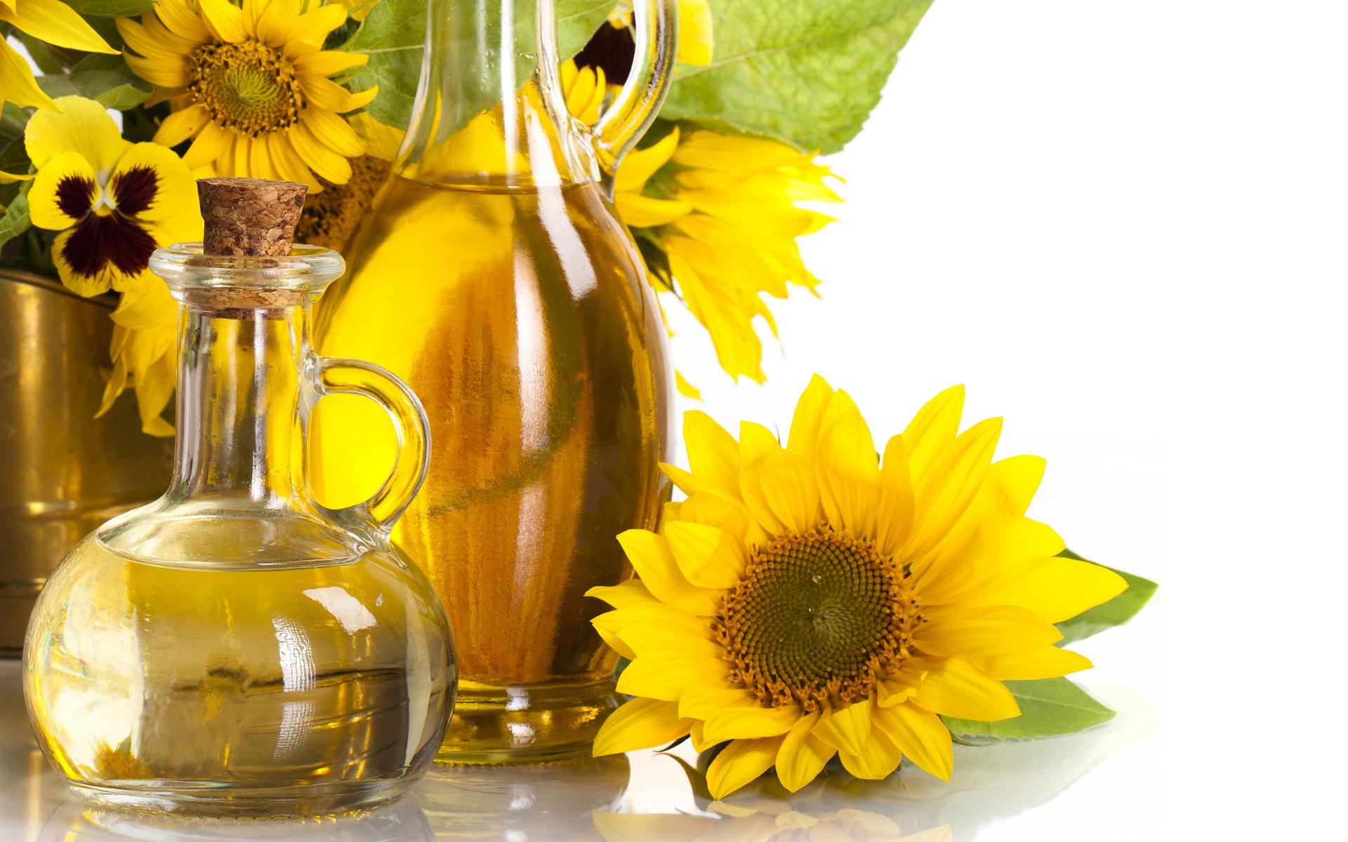 Nature flower sunflower yellow still life oil vase glass ...