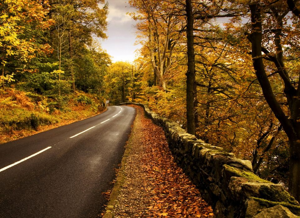 nuture landscapes roads fence stripes stone rocks leaves trees forests skies sky clouds colors wallpaper