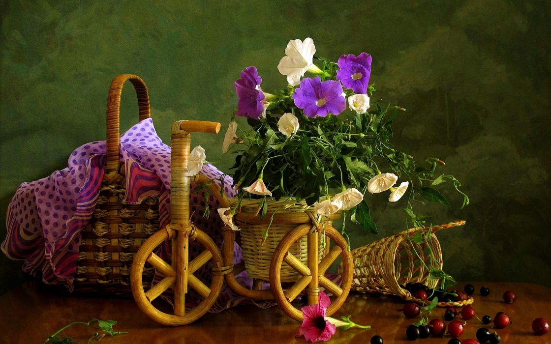 nature flowers petals still life country photography artistic berries basket fruit wood wheels bicycles decoration wallpaper