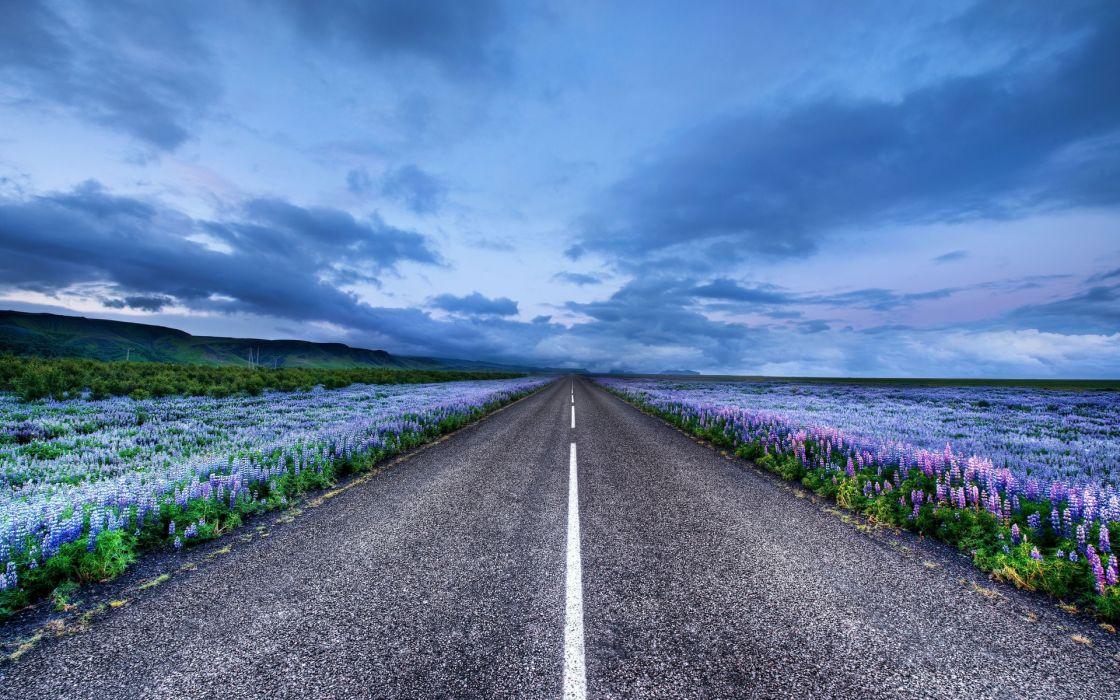 nature landscapes roads asphalt stripes lines flowers fields sky skies clouds wallpaper