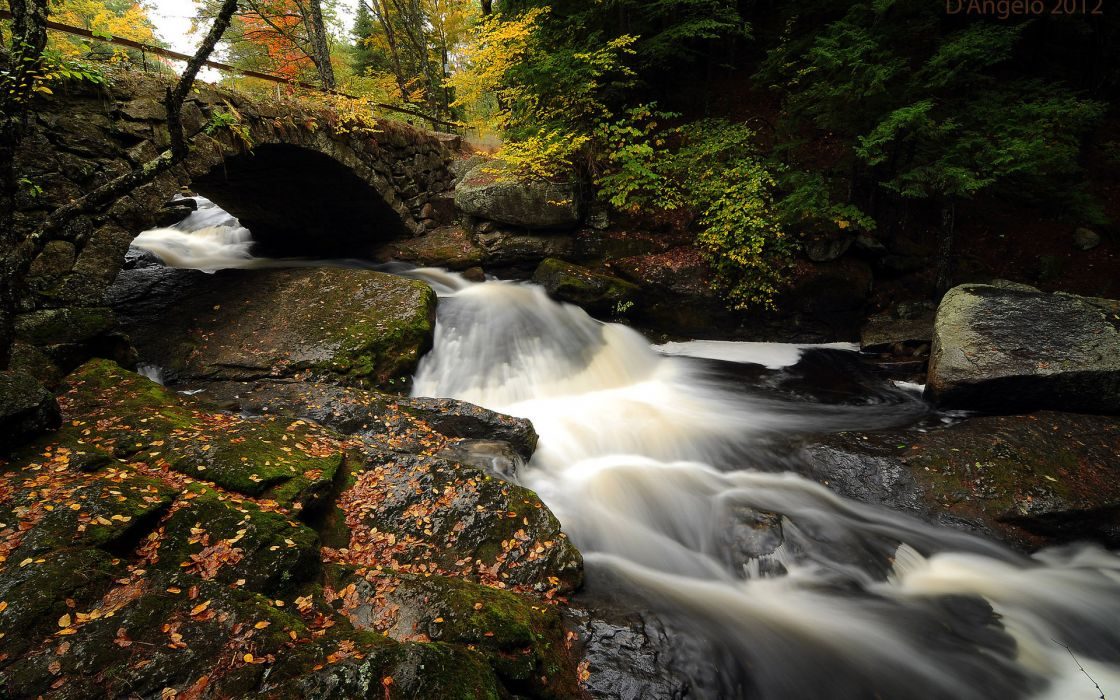 nature landscape waterfall water stream rocks leaves timelapse trees forest autumn fall seasons scenic  wallpaper