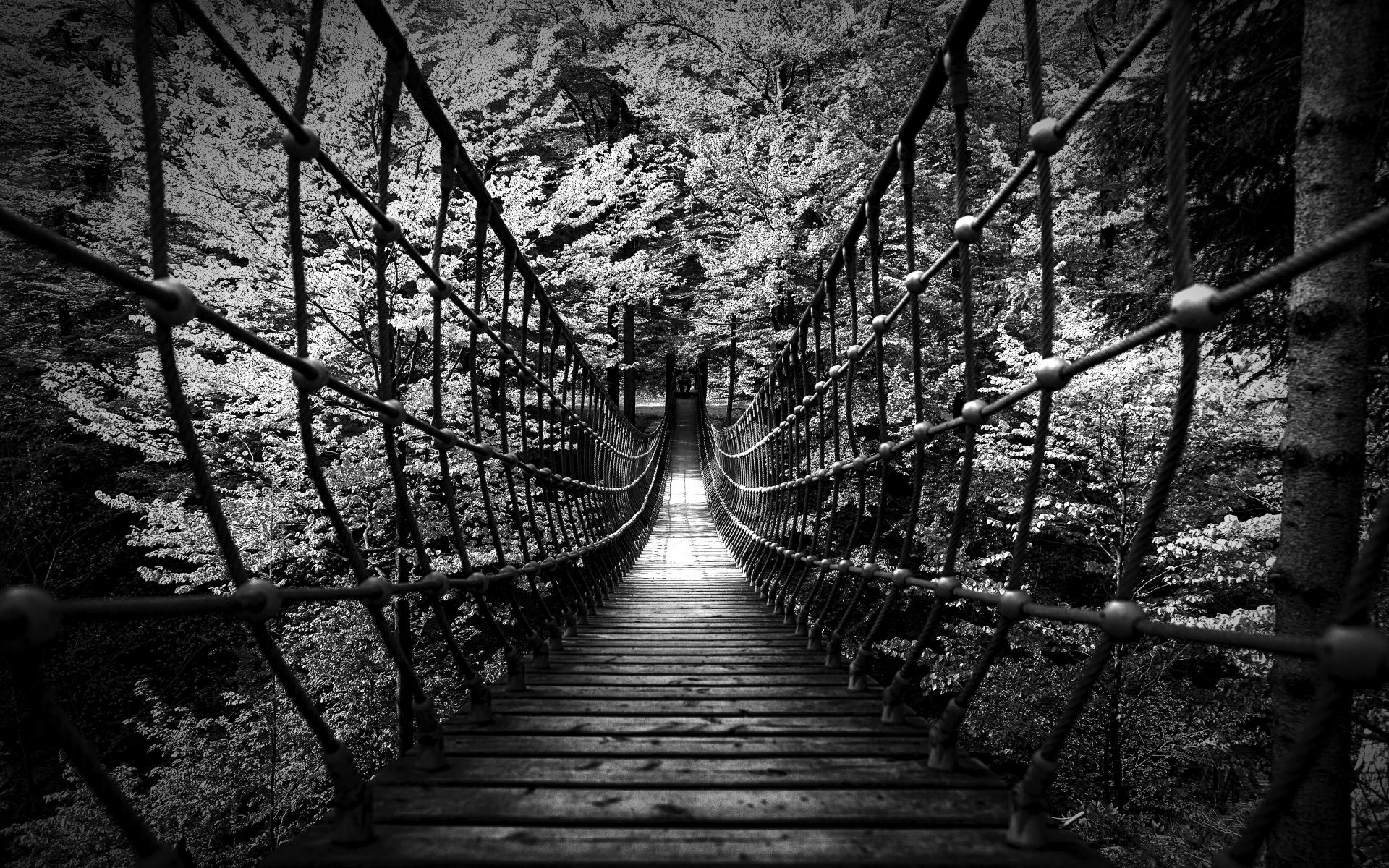 monochrome black white bw landscapes nature wood rope