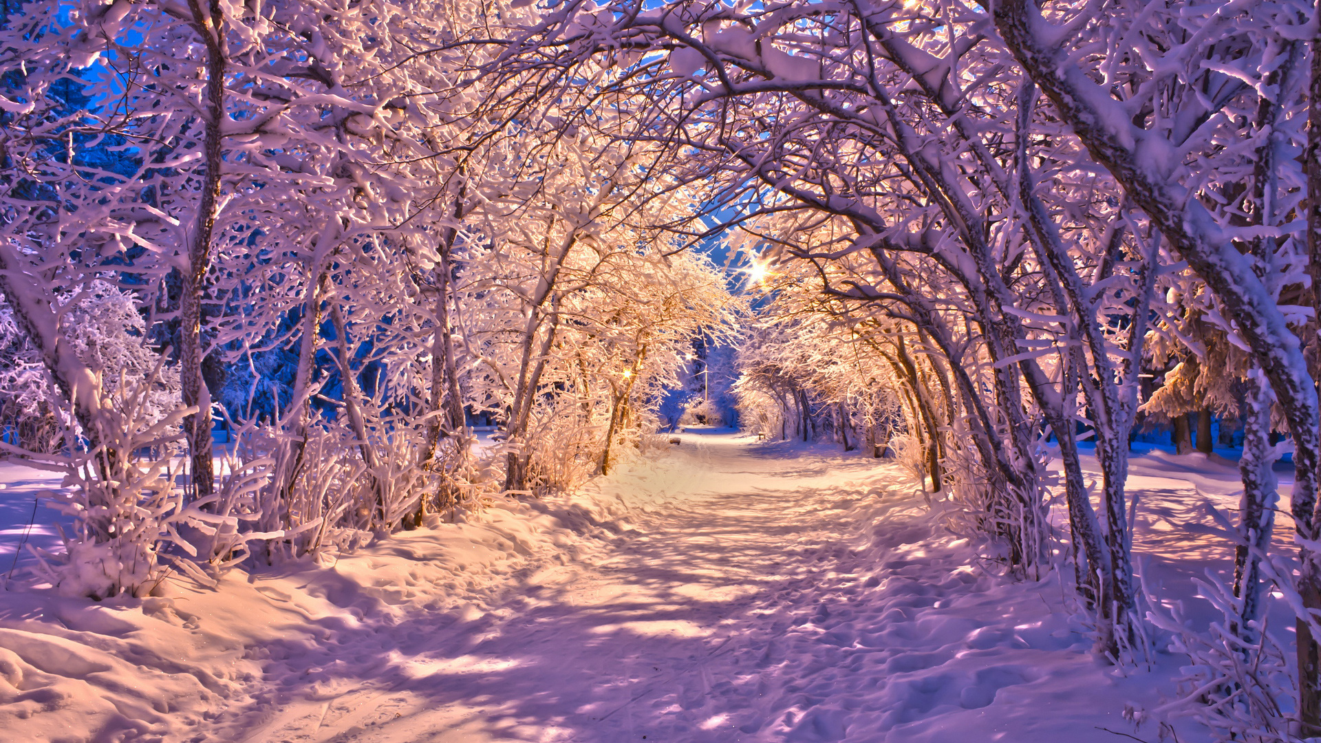 Nature landscapes winter snow christmas sidewalk roads lights ...