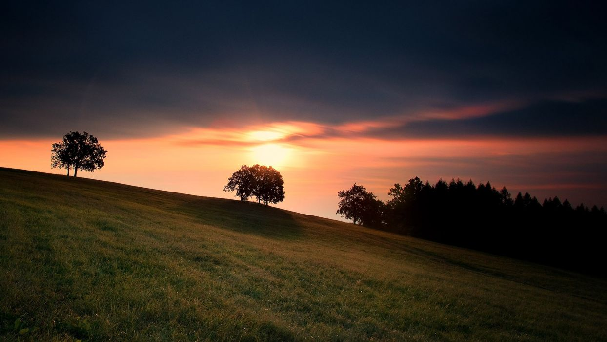 nature landscapes fields grass sunset sunrise sky clouds sunlight trees colors wallpaper