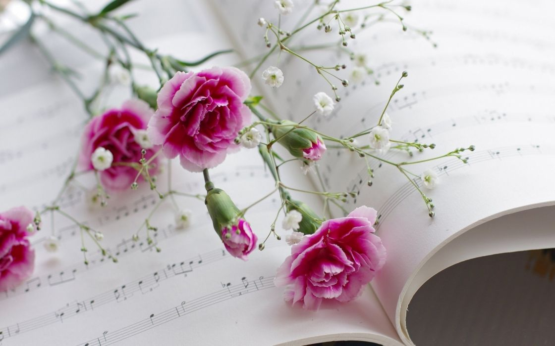 music notes book paper pages classic bokeh flowers art photography still life wallpaper