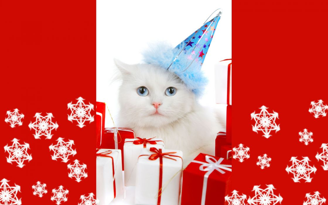 holidays christmas seasonal cats wallpaper