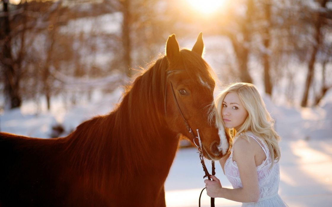 animals horses nature landscapes winter snow seasons trees forest sun sunlight photography pose blonde eye face dress mood emotion love friend women female girl babes model wallpaper