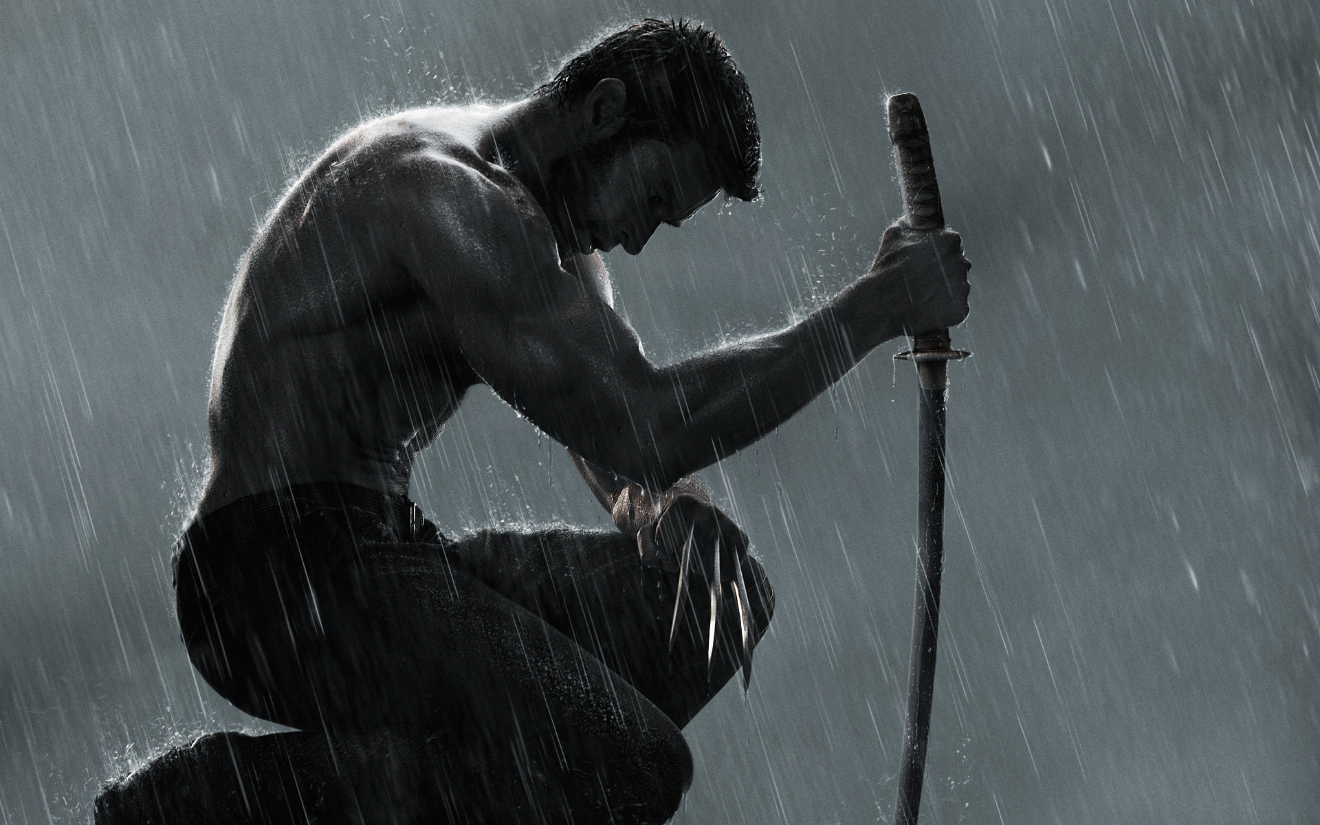 wolverine wallpapers | wallpaperup