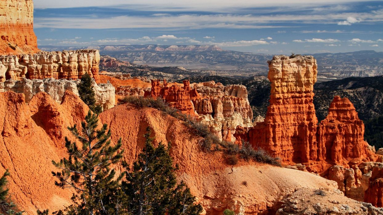 nature landscapes canyon rocks colors scenic view sky clouds desert plants trees red detail wallpaper
