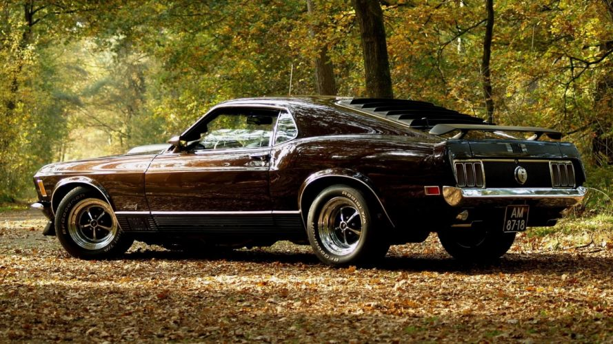 vehicles cars ford mustang boss spoiler wings wheels shine muscle old retro classic landscapes leaves trees forest autumn fall seasons roads street wallpaper