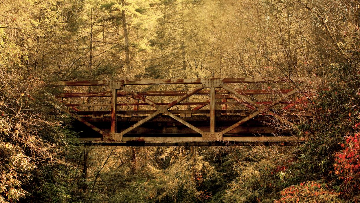 trestle rust frame bridges architecture structure tracks railroad roads path metal steel nature trees forest leaves scenic wallpaper