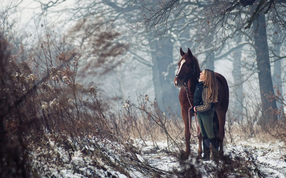 animals horses blondes women females girls models mood emotion bokeh babes landscapes trees forests winter snow moonlight light love friends photography pose plants seasons wallpaper