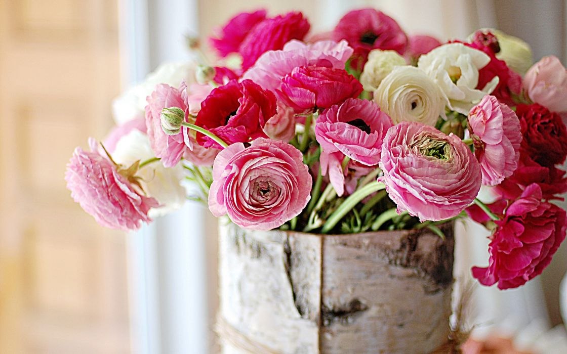 still life bouquets nature flowers color pink vase bowl macro soft bokeh window wallpaper