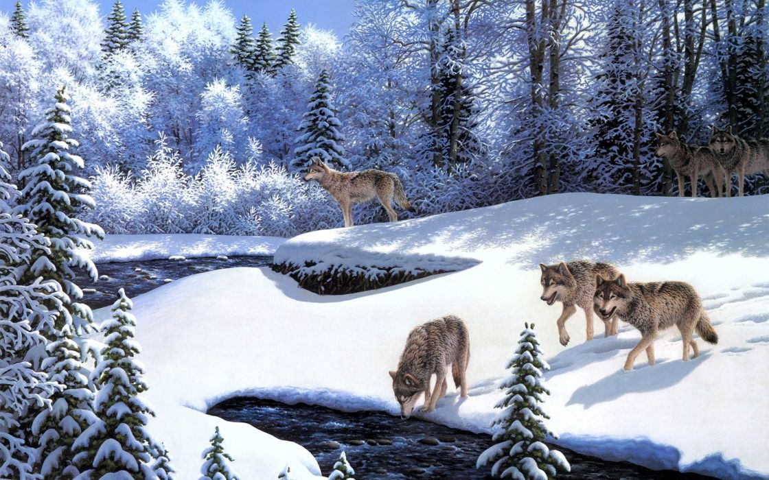 Robert A Richert On the Prowl art paintings oil nature landscapes forest trees winter snow seasons rivers streams water scenic bright white wildlife predators animals wolf wolves cold pack wallpaper