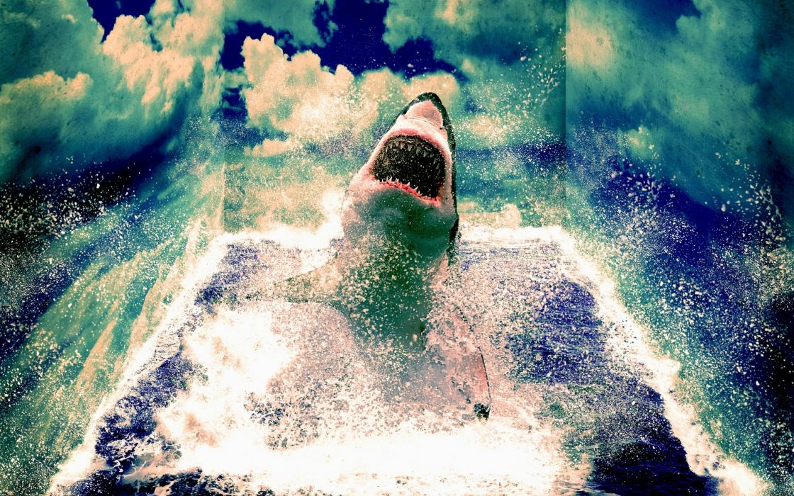 animals sharks manipulation art cg digital artistic 3d psychedelic mind teaser ocean sea nature sky clouds waves scary spooky fangs jaws movies wallpaper