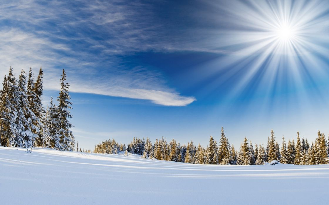 nature landscapes trees forests winter snow seasons bokeh sky sunlight sunbeam scenic manipulation wallpaper