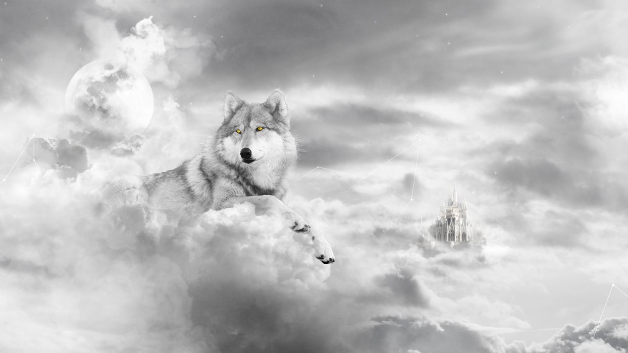 animals wolf wolves fur face clouds sky fantasy cg digital art castle dream surreal psychedelic mystical mythical moon sun light wallpaper