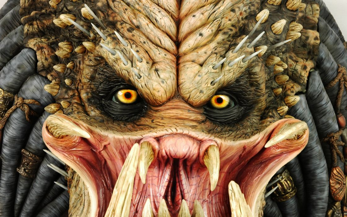 Predator movies games aliens sci fi science fiction ugly fangs eyes face color detail monsters creatures enemy warriors soldiers wallpaper