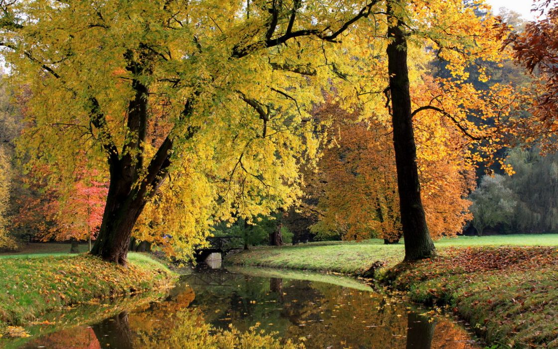 nature landscapes trees canal rivers stream waterway water reflection leaves grass shore autumn fall seasons park garden color wallpaper