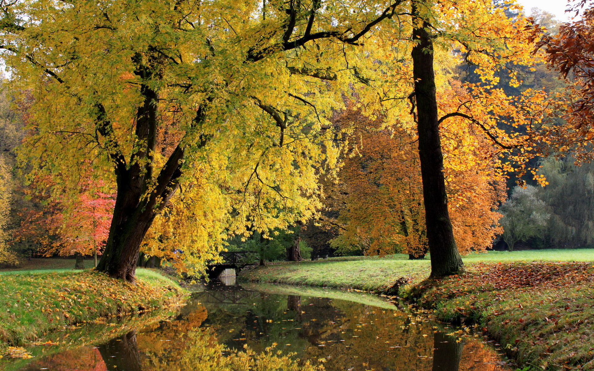 Nature landscapes trees canal rivers stream waterway water ...