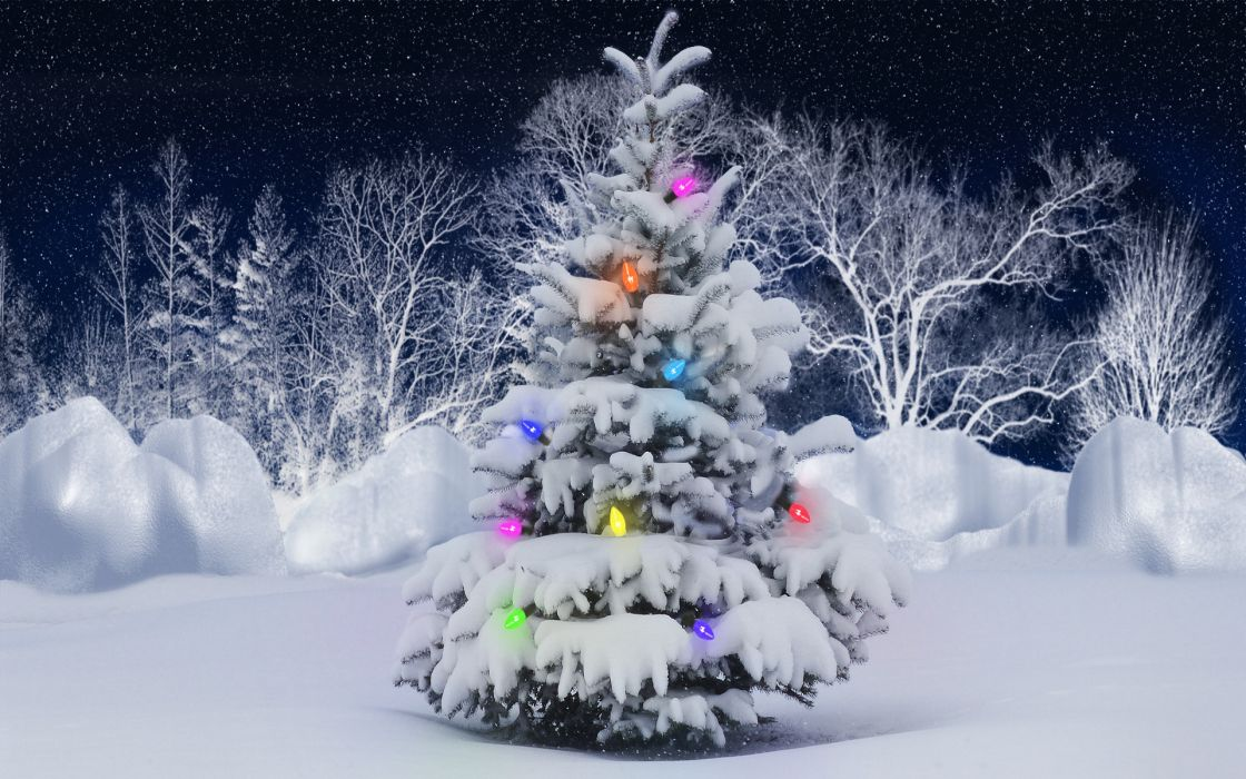holidays christmas winter snow lights color trees seasonal stars sky wallpaper