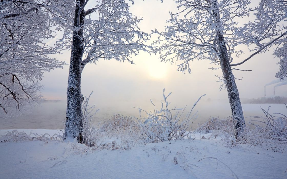 nature landscapes lakes rivers ice snow winter seasons plants trees shore fog mist haze cold sunrise sunset white bright architecture smoke steam buildings factory stack wallpaper