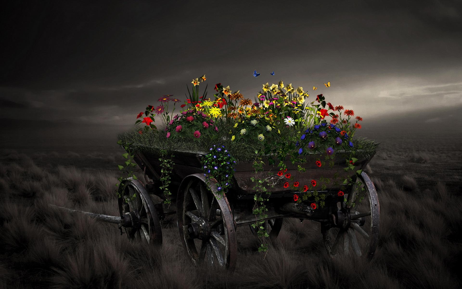 Art Artistic Matte Paintings Nature Flowers Landscapes Vehicles Wagon Wheels Dark Fields Grass Sky Clouds Moon Light Fantasy Plants Color Wallpaper