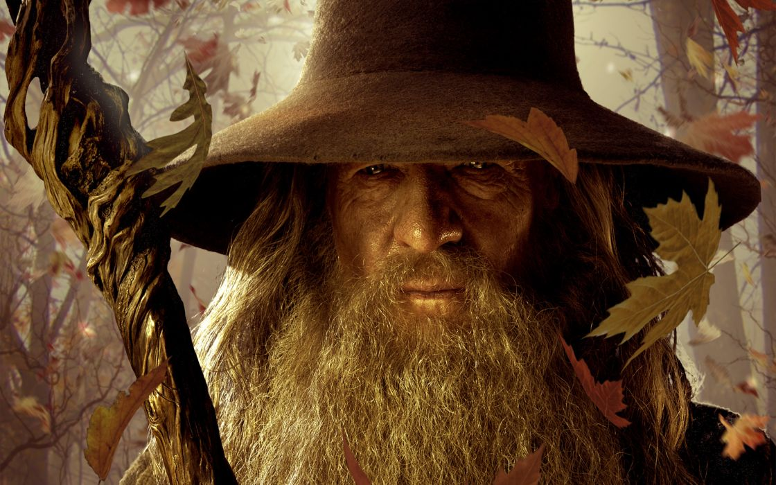 The Hobbit an unexpected journey Gandalf  lord of the rongs lotr fantasy magician mage wizard sorcerer face eyes stare staff trees forests autumn fall seasons art posters wallpaper
