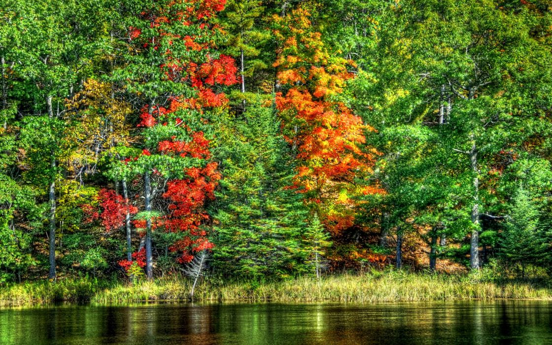 nature landscapes trees forests hdr autumn fall seasons leaves color contrast shore lake pond rivers water reflection scenic wallpaper
