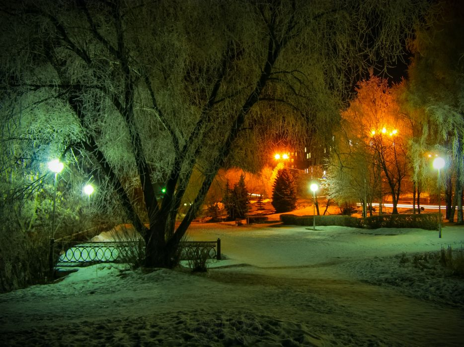 nature landscapes architecture bridgesfence park garden path sidewalk roads night lights winter snow seasons cold lamp post trees scenic color bright places wallpaper