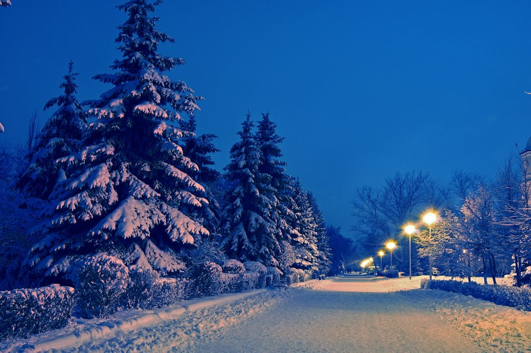 nature landscapes roads path park garden lamp posts trees night lights winter snow seasons cold wallpaper