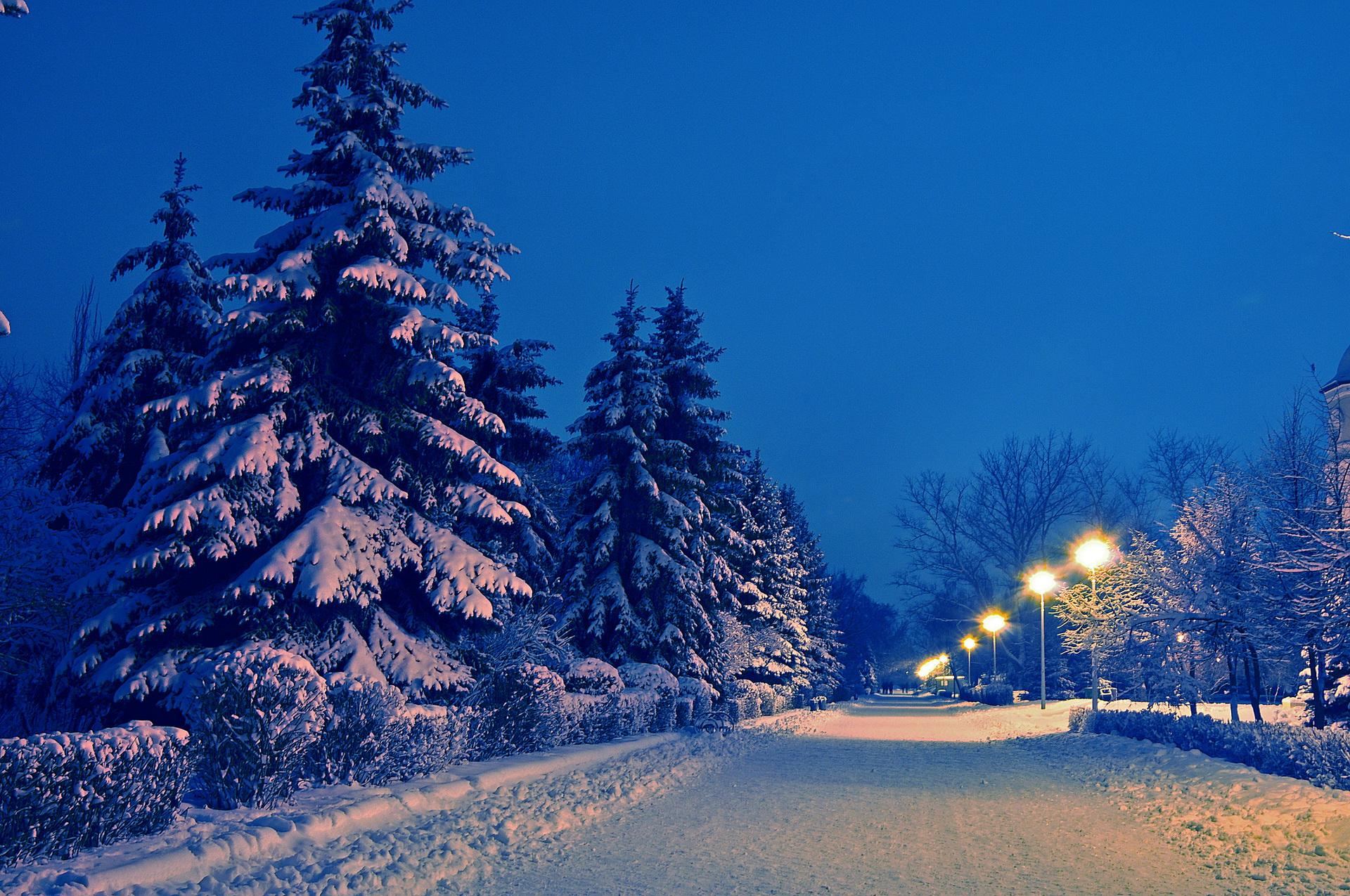 Nature landscapes roads path park garden lamp posts trees ...