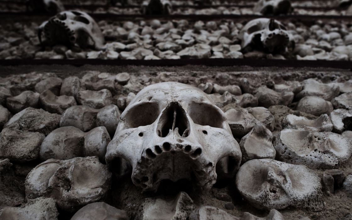 dark fantasy death dead skulls skeleton halloween horror scary spooky creepy black white eyes face wallpaper