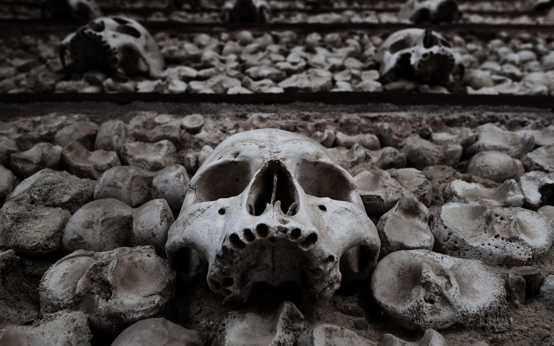 Dark fantasy death dead skulls skeleton halloween horror scary ...