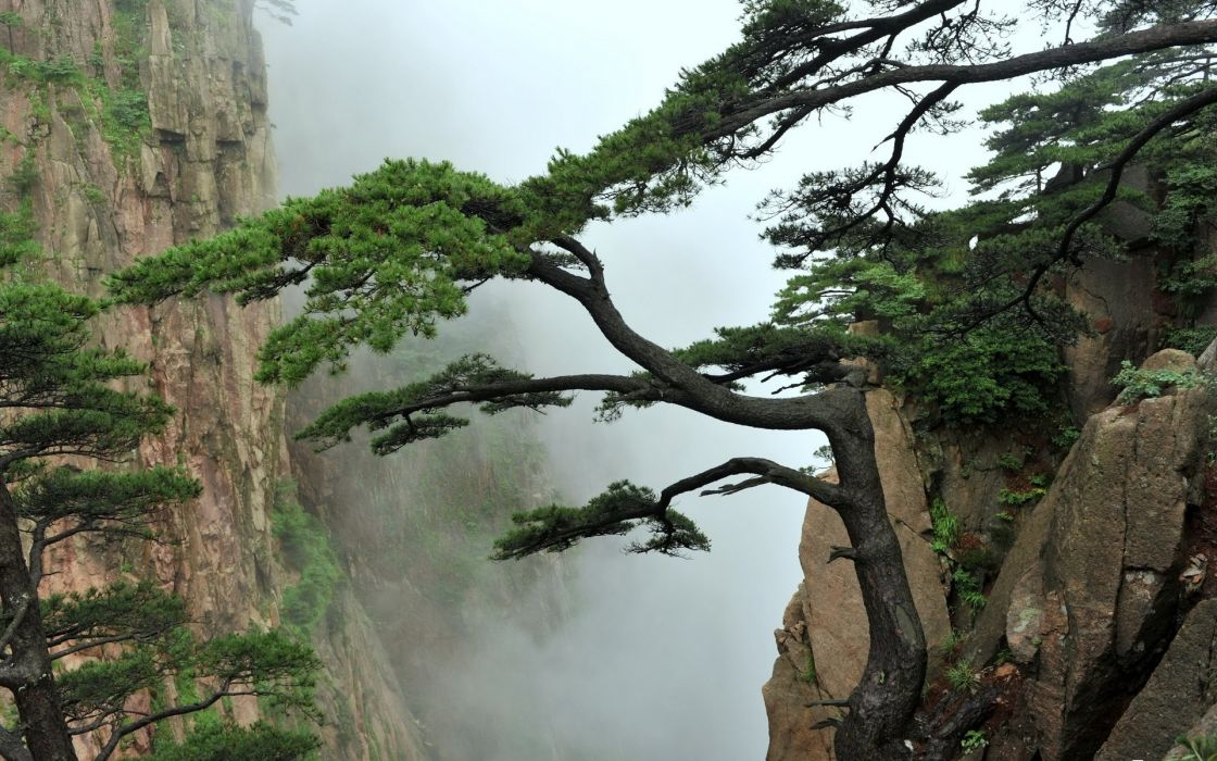 nature landscapes mountains trees fog mist asian oriental clouds wallpaper
