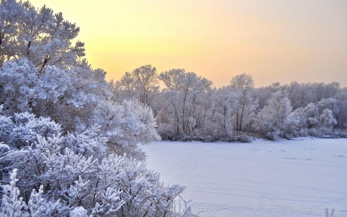 nature landscapes fields trees meadow winter snow seasons sky sunset sunrise wallpaper