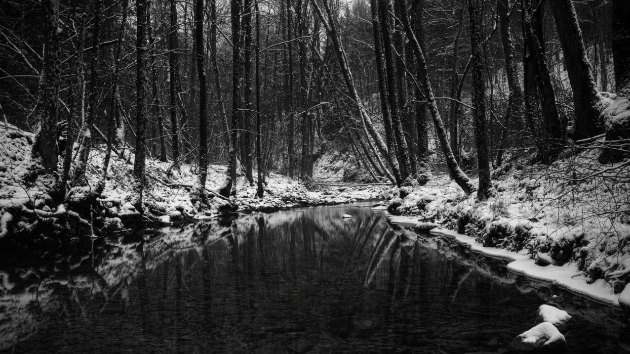 black white monochrome nature landscapes trees forests rivers streams water reflection dark winter snow seasons wallpaper