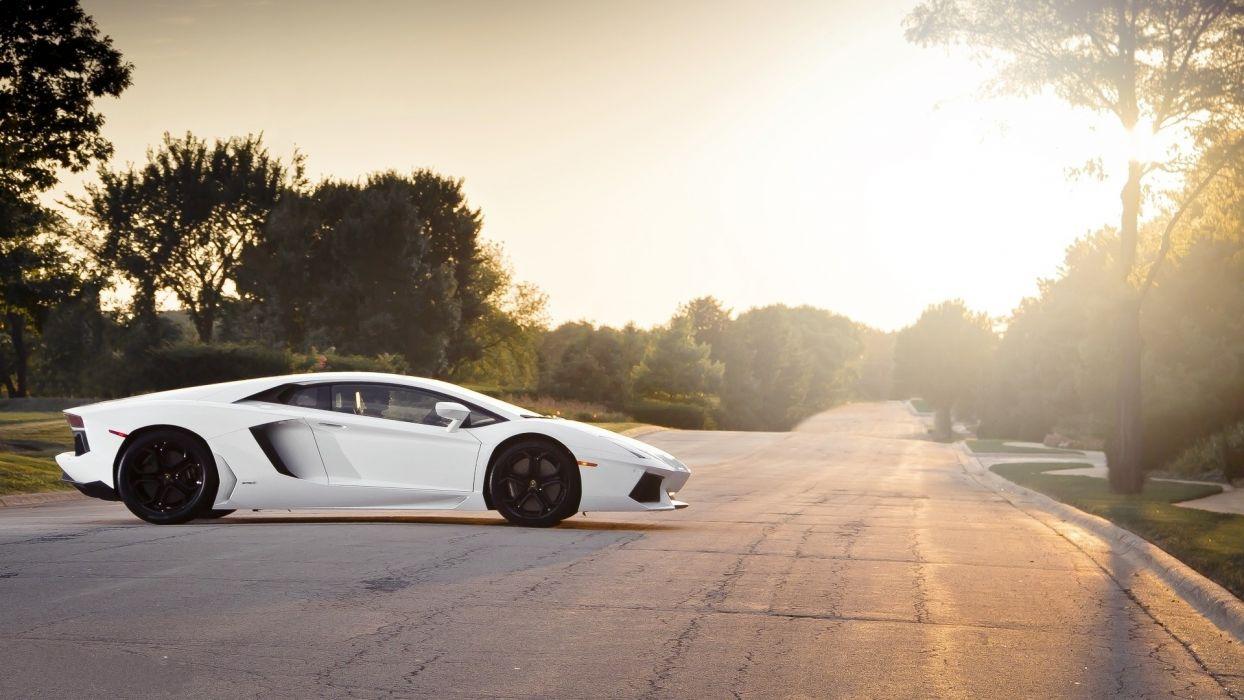 Lamborghini vehicles cars auto roads sunlight trees track wheels exotic supercar wallpaper