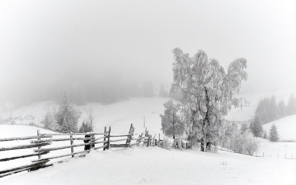 nature landscapes fence fields trees winter snow seasons white bright cold snowing fog mist haze scenic wallpaper