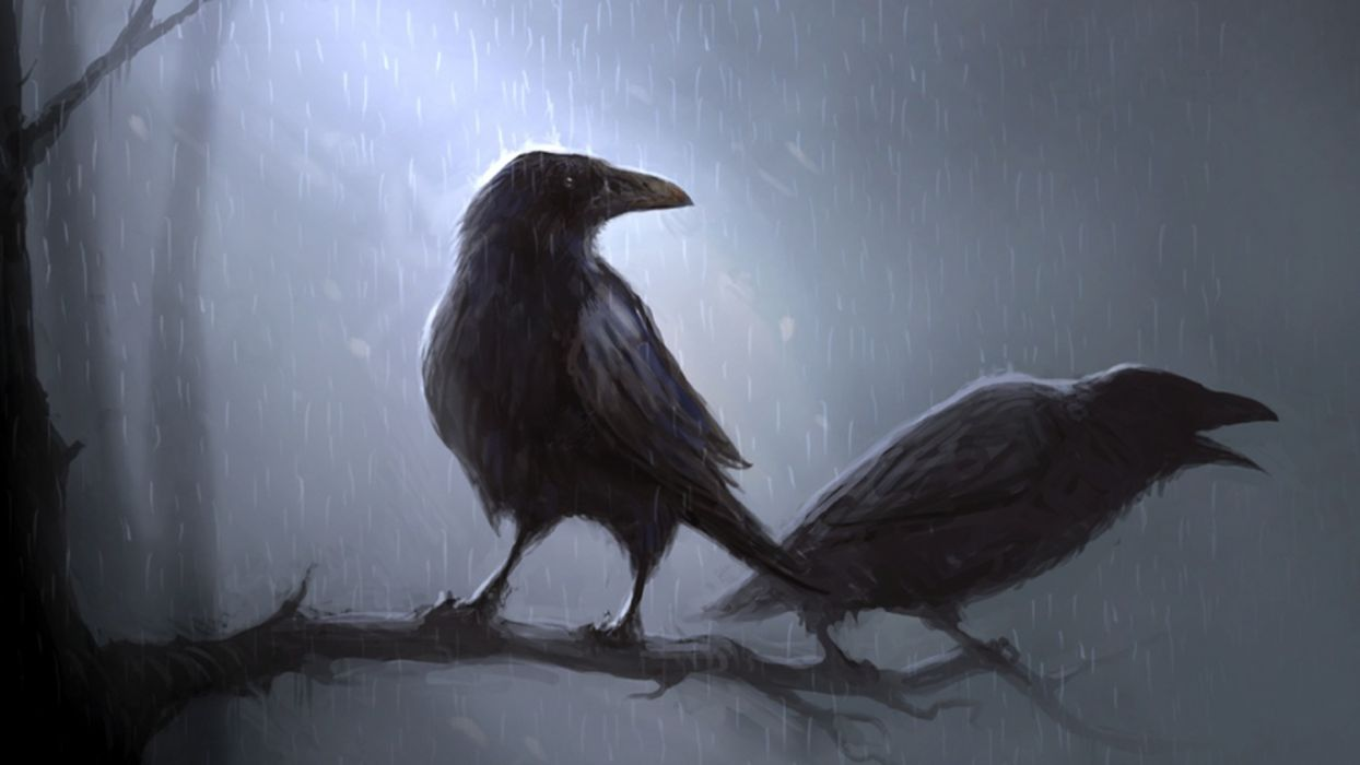 animals birds crows ravens poe storm rain trees forest moon moonlight art artistic mood wallpaper